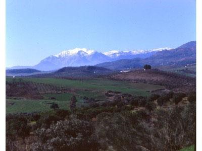 Sierra de las Nieves, un paraje maravilloso