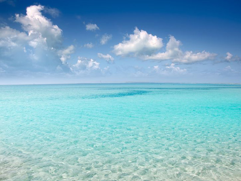 Hoteles de playa en Mallorca, Marina Hotels